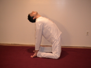 modified yoga for weight loss pic 7