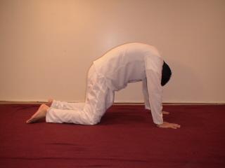 senior yoga  great simple yoga exercises