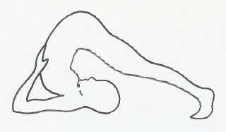 Hatha Yoga Position Picture