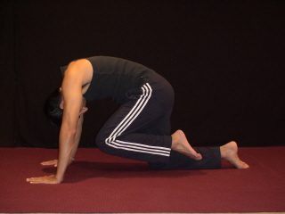 Best Yoga #3 - Tiger Pose Starting Position