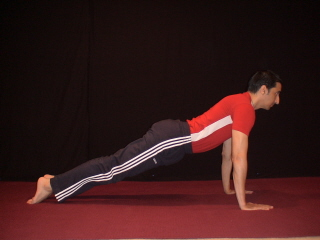 yoga plank pose  illustrations beginners yoga tips