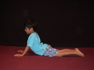 You Can Get Lots More Details About This Pose From The Following Chapter Of Free Online Hatha Yoga Poses E Book Cobra For Healthy Back And